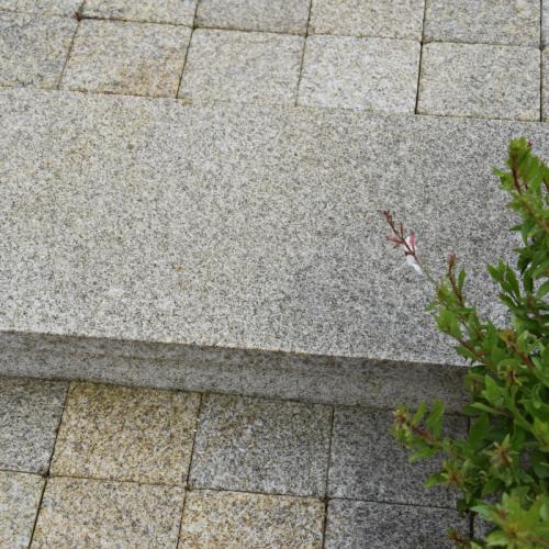 bordure granit beige